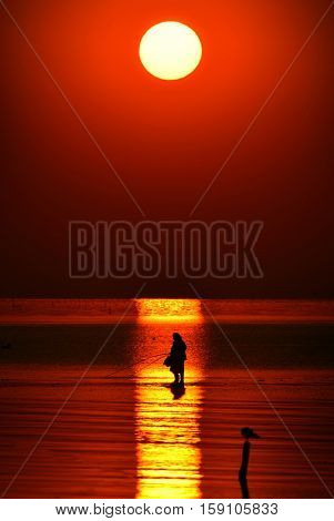 man fishing in the sunset light