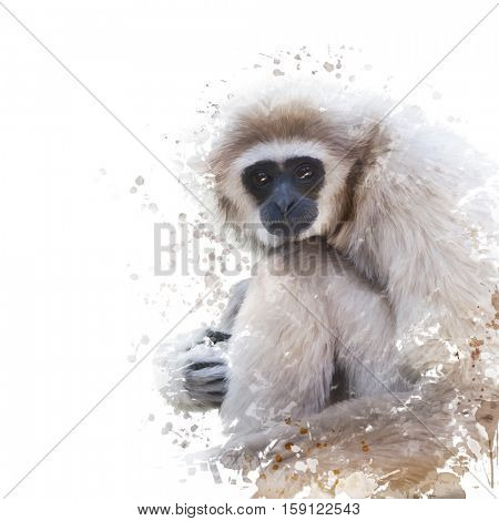 Digital Painting of White-handed gibbon