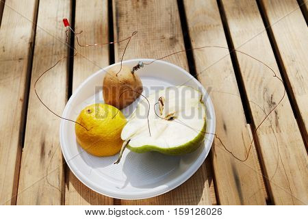 Producing electricity with pieces of lemon, pear and potato connected by wires on plate on wooden table outdoor.