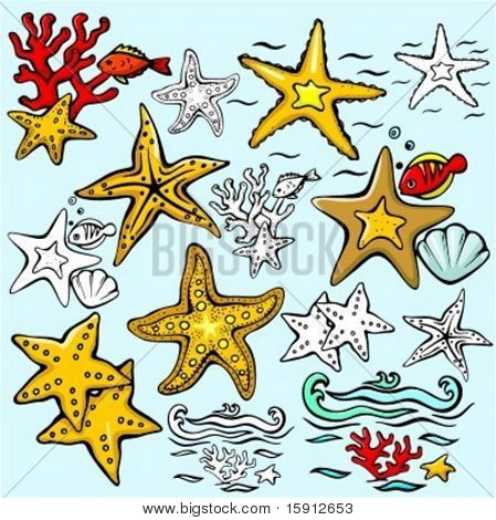 A set of 7 vector illustrations of star-fishes in color, and black and white renderings.