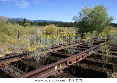 Sagebrush Railroads, Mcewen, Oregon