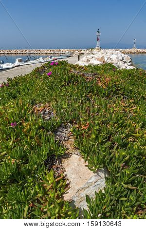 Seascape with Spring flowers and pier in Skala Sotiros, Thassos island, East Macedonia and Thrace, Greece