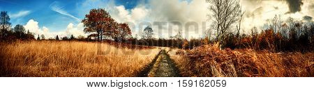 Panoramic autumn landscape with country path. Fall nature background