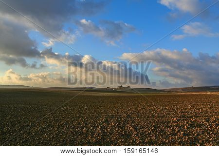 Between Apulia and Basilicata:hilly agricultural landscape before sunset.Farm on plowed land dominated by Cloudscape view.Italy