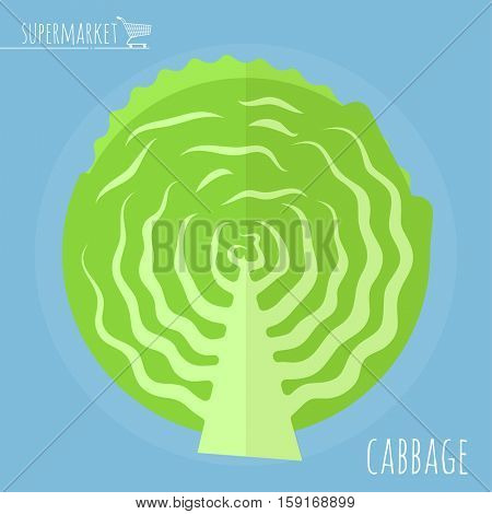 Cabbage. Long shadow flat design vector icon.