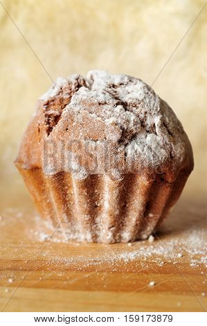 closeup of cupcake with powdered shugar on the wood board