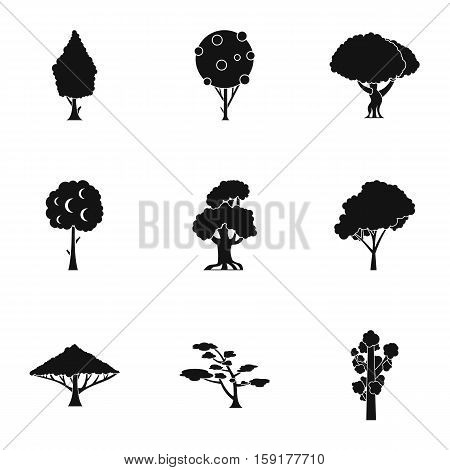 Types of trees icons set. Simple illustration of 9 types of trees vector icons for web
