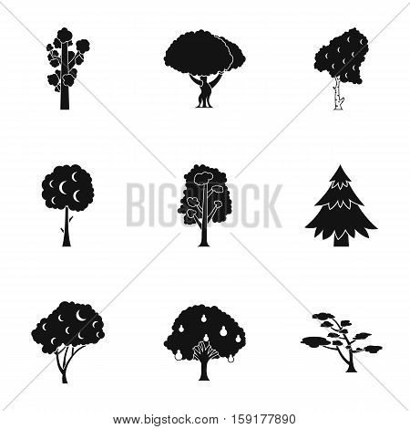 Arboreal plant icons set. Simple illustration of 9 arboreal plant vector icons for web