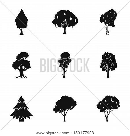 Kind of trees icons set. Simple illustration of 9 kind of trees vector icons for web