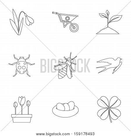 Kaleyard icons set. Outline illustration of 9 kaleyard vector icons for web