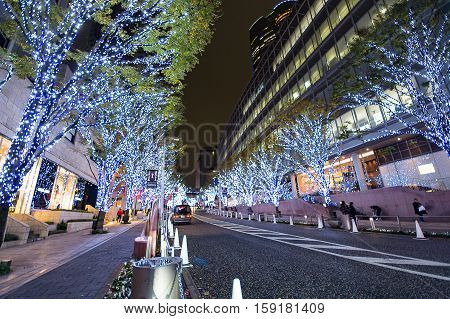 Roppongi Hills Keyakizaka Christmas Illumination in Tokyo , Japan