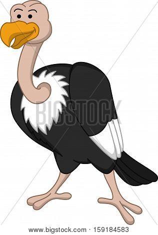 Condor bird vector illustration design eps 10