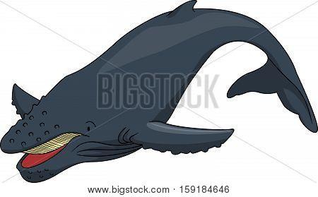 humpback whale vector illustration design eps 10