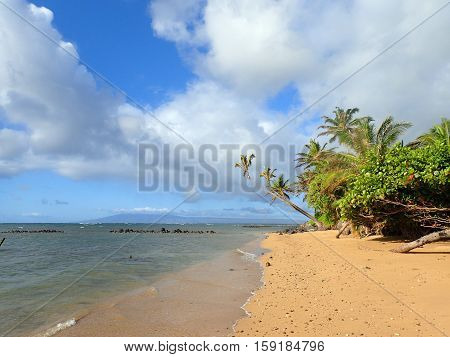 Waves roll onto shore on Wailua Beach with fishpond at Dawn with Coconut trees along the shore on the island of Molokai in the state of Hawaii.