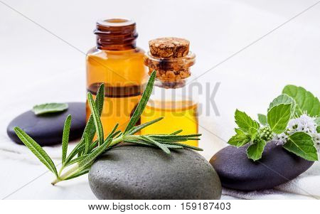 Alternative Health Care And Herbal Medicine . Close Up Fresh Rosemary And Peppermint Leaves On Spa S