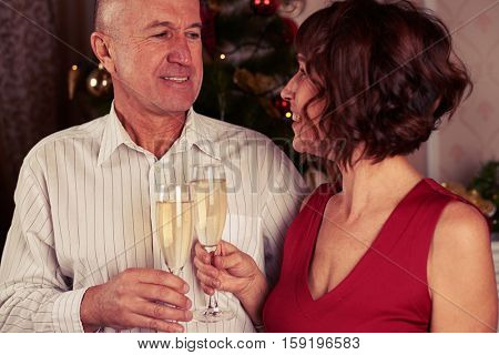 A mid shot of a cute smiling couple drinking champagne near the new year tree, gazing one another. A curly chestnut wearing red dress, man wearing white stripped shirt