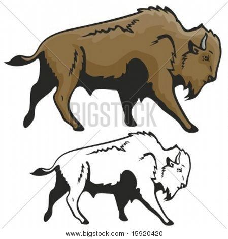 Vector Illustration of ein Bison.