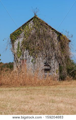 An abandoned farmhouse sits in a North Georgia field.