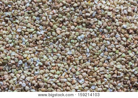 texture of many seeds (green buckwheat) background poster