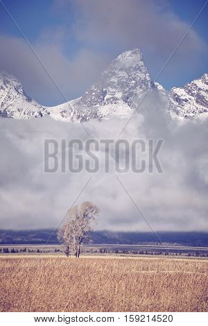 Vintage Toned Teton Mountains Range, Wyoming, Usa.