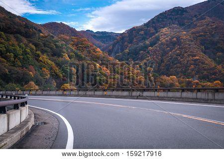 Road in Autumn mountain on Mt.Shigakogen, Nagano province, Japan.