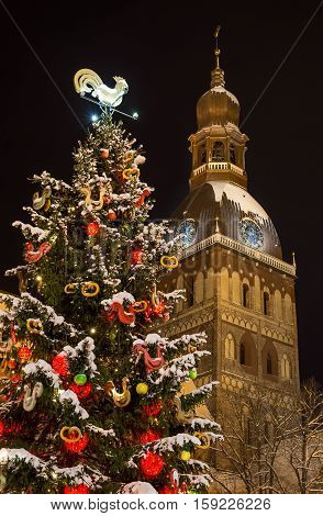 Christmas tree with cathedral tower watches at night - decorated