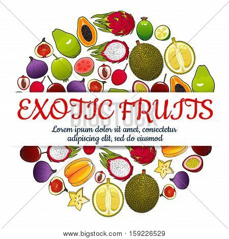 Exotic fruits poster of vector tropical whole and half cut sliced juicy fruits orange, papaya, durian, guava, carambola, dragon fruit, lychee, feijoa, passion fruit maracuya, longan, figs, rambutan, mangosteen