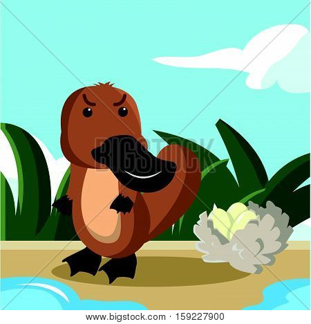 platypus guaring his eggs vector illustration design