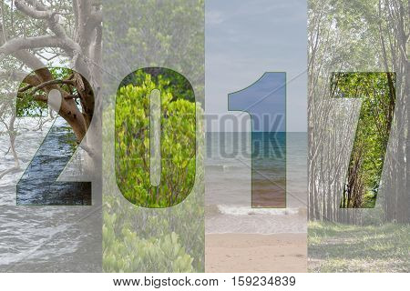 Happy New Year 2017 In Travel Theme (forest, Mangrove, Sea, Beach)