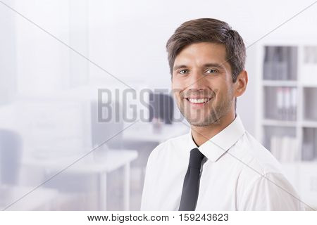 Smiling Handsome Businessman In Office