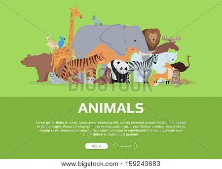 Animals banner. Various animals stands or sits on green background. Poster with elephant, giraffe, panda, fox, monkey, ostrich, bear, tiger, camel, kangaroo parrot zebra lion Website template