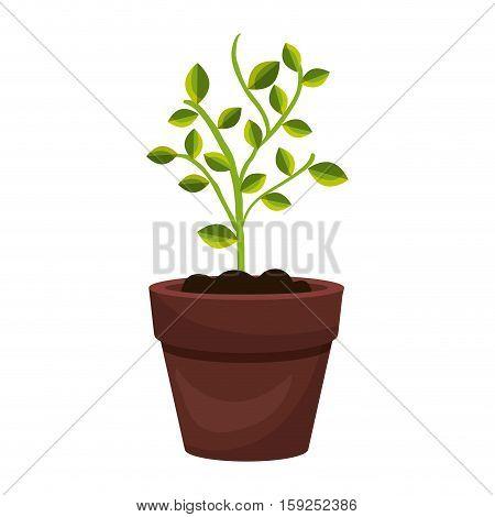 tree plant cultivate icon vector illustration design