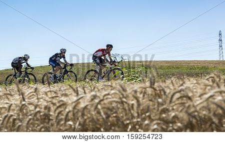 Saint-Quentin-FallavierFrance - July 16 2016: Three cyclists (Lars Bak of Lotto-Soudal TeamPetr Vakoc of Etixx-Quick Step Team and Natnael Berhane of Dimension Data Team) riding in a wheat plain during the stage 14 of Tour de France 2016.