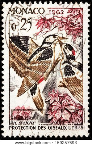 LUGA RUSSIA - NOVEMBER 29 2016: A stamp printed by MONACO shows great spotted woodpecker (Dendrocopos major) is a bird species of the woodpecker family (Picidae) circa 1962