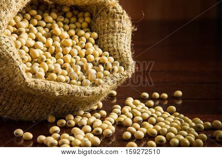 Soybeans In Sack Bags