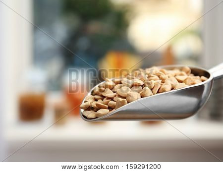 Chickling vetch in metal scoop on blurred background