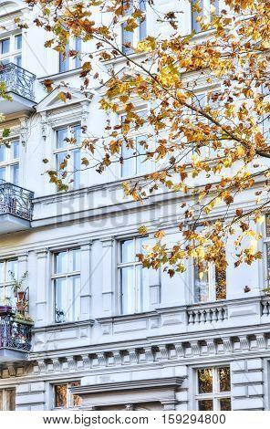 Old Building In Berlin Kreuzberg With Autumn Tree