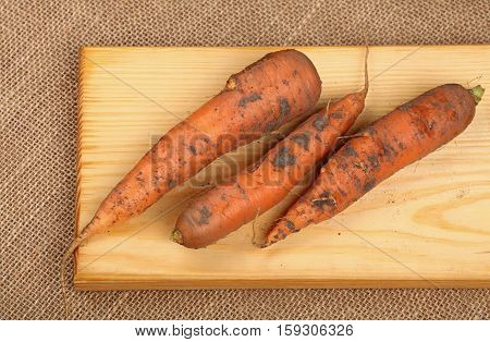 Three Raw Carrots At Wooden Board On Canvas