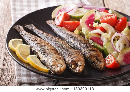 Grilled Sardines With Fresh Salad Of Cucumber, Radish, Tomato, Onion Close-up. Horizontal