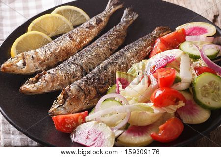 Grilled Sardines With A Salad Of Cucumber, Radish, Tomato, Onion Close-up. Horizontal