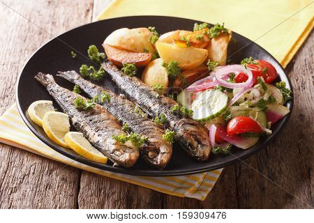 Fried Sardines With Roasted Potatoes And Fresh Salad Closeup. Horizontal