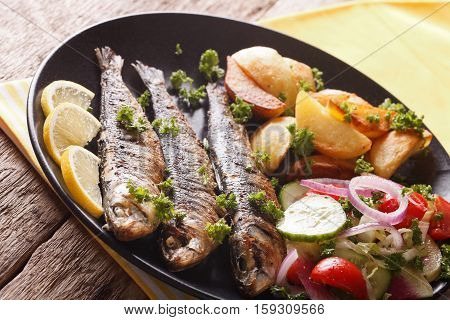 Grilled Sardines With Roasted Potatoes And Fresh Salad Closeup. Horizontal