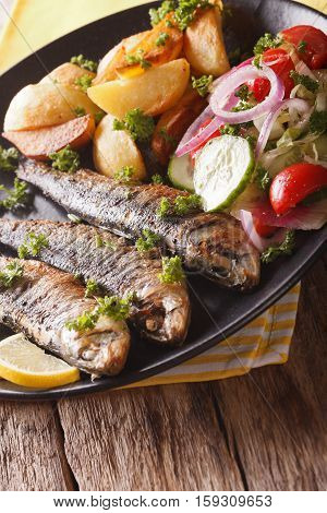 Fried Sardines With Potatoes And Fresh Vegetable Salad Close-up. Vertical