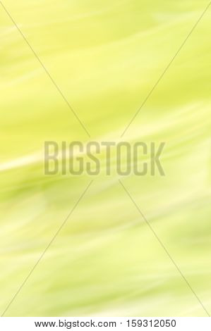 Blurred abstract background. Soft green windswept landscape concept.