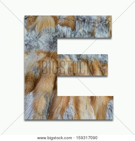 E red fox fur in a font trained