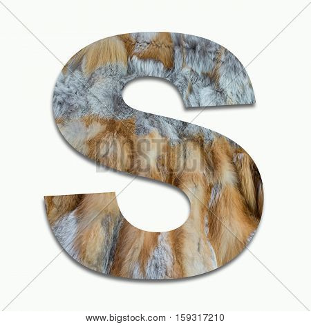 S red fox fur in a font trained
