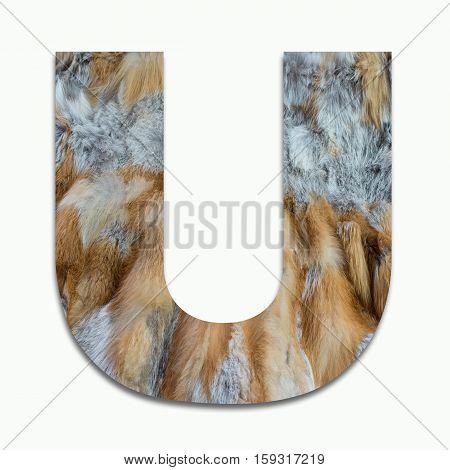 U red fox fur in a font trained