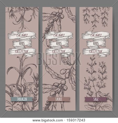 Set of three vector banners with tarragon, sage, laurel. Culinary herbs collection. Great for cooking, medical, gardening design.