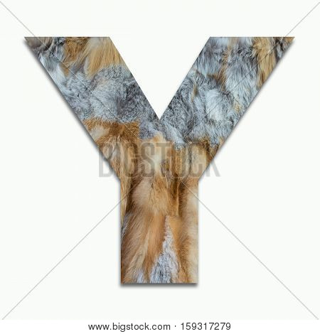 Y red fox fur in a font trained