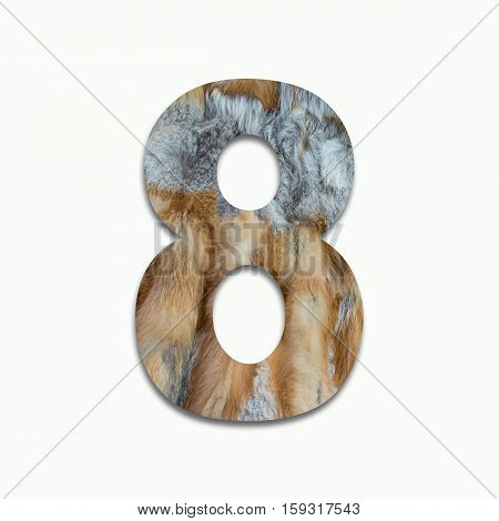 8 red fox fur in a font trained